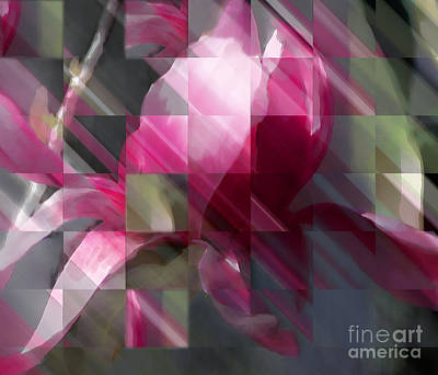 Digital Art - Magnolia by Ursula Freer