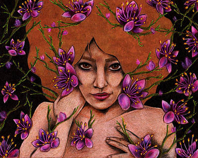 Magnolia Flower Drawing - Magnolias by Amanda Trask