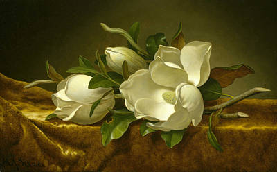 Cloth Painting - Magnolias On Gold Velvet Cloth by Martin Johnson Heade