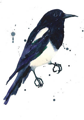 Magpie Painting Art Print by Alison Fennell
