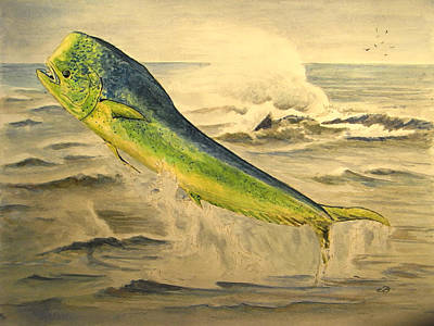 Water Sports Painting - Mahi Mahi by Juan  Bosco