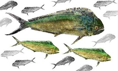 Fish Rubbing Mixed Media - Mahi School by Brett Swindell