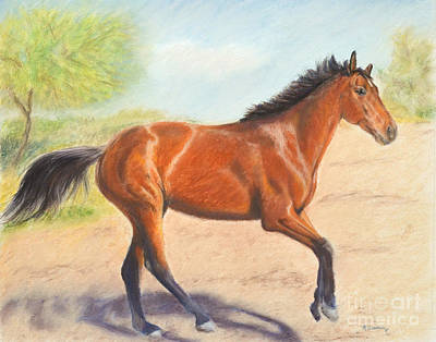 Painting - Mahogany Bay Horse In Pastel by Kate Sumners