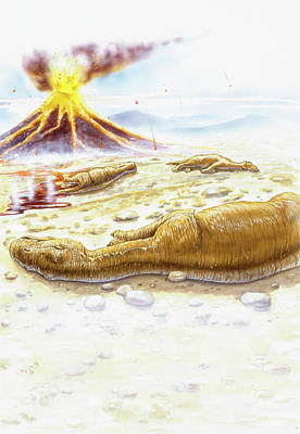 Maiasauras Killed By Volcanic Eruption Art Print