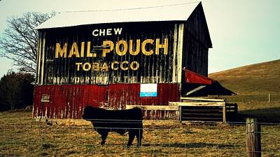 Mail Pouch-4 Art Print