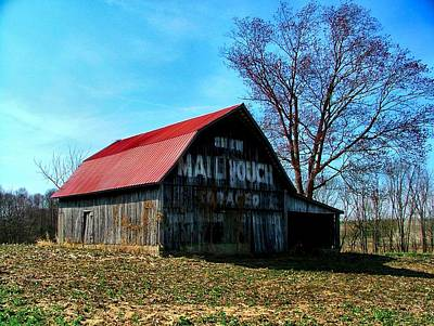 Mail Pouch Barn Photograph - Mail Pouch Ad by Julie Dant