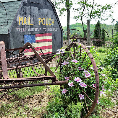 Photograph - Mail Pouch Barn And Clematis by Patricia Januszkiewicz