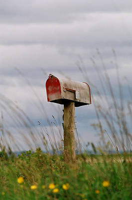 Mailbox Art Print by Michele Wright