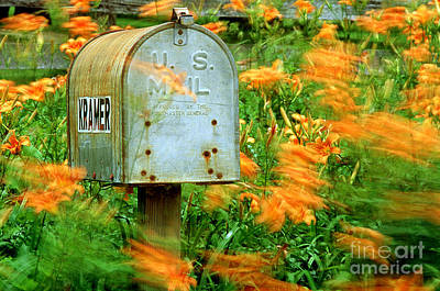 Mailbox Surrounded By Tiger Lilies Art Print by James L. Amos