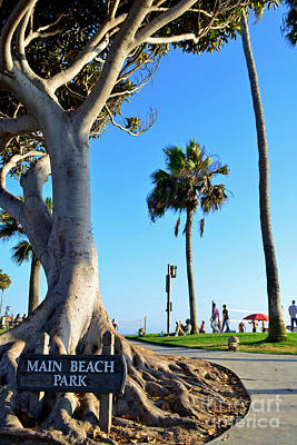 Photograph - Main Beach Park Laguna by Third Eye Perspectives Photographic Fine Art