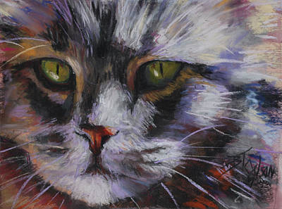 Main Coon Print by Billie Colson