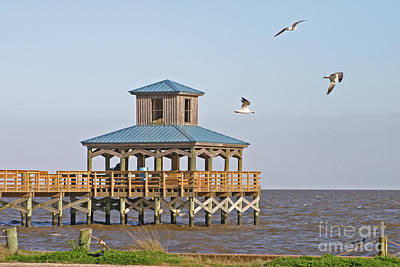 Photograph - Main Pier At Pleasure Island by D Wallace