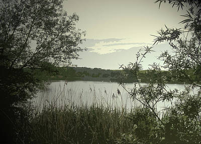 Vale Drawing - Main Pond At Carr Vale Flash Nature, This Nature Reserve by Litz Collection