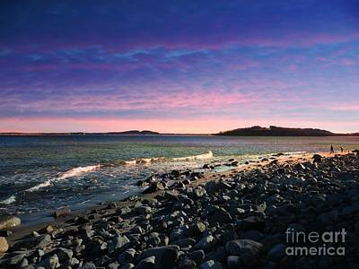 Maine Coastline #1 Art Print