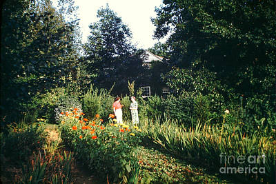 Photograph - Maine Garden by George DeLisle