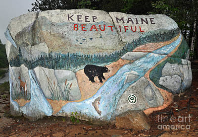 Photograph - Maine Rock Painting by Glenn Gordon