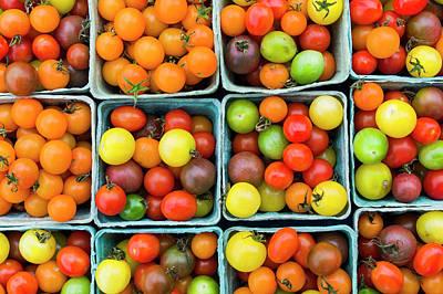 Cherry Tomato Photograph - Maine, Rockland, Cherry Tomatoes by Walter Bibikow