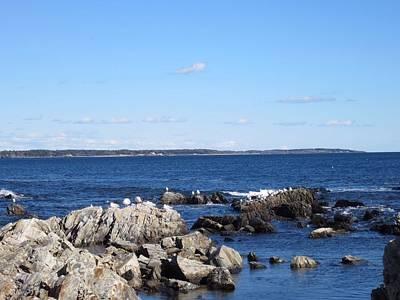 Photograph - Maine Seacoast by Patricia Urato