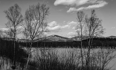 Maine Woods In Winter Black And White Art Print by Chandler McGrew