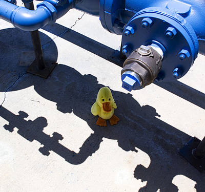 Toys Photograph - Maintenance Duck by William Patrick