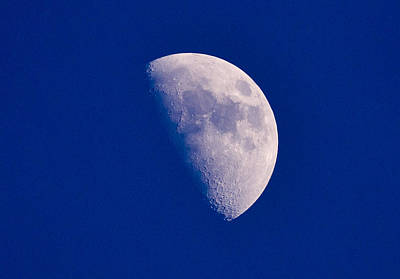 Majestic Moon  Original