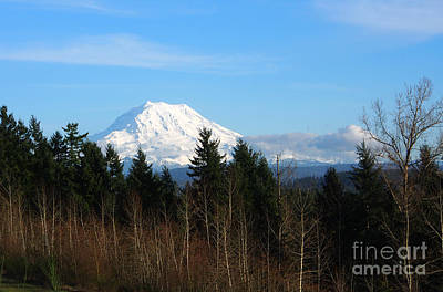 Majestic Mount Rainier Art Print