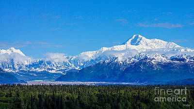 Majestic Mt Mckinley Art Print by Jennifer White