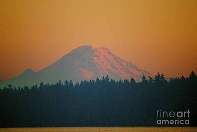 Photograph - Majestic Rainier by Terri Thompson