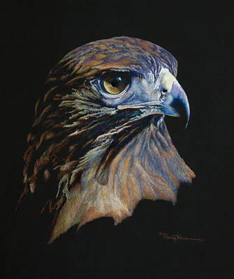Painting - Majestic Raptor Red-tail Hawk by Mary Dove