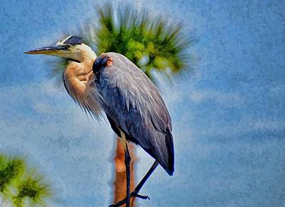 Art Print featuring the photograph Majestic Tri-colored Heron by Pamela Blizzard