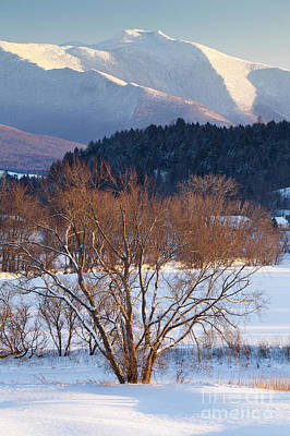Photograph - Majestic Winter by Alan L Graham