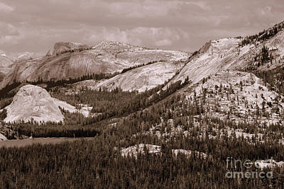Photograph - Majesty Mountains Sepia  by Mary Lou Chmura