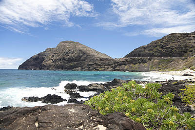 Makapuu Beach Art Print by Brandon Tabiolo