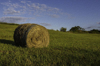 Photograph - Make Hay by Sara Hudock
