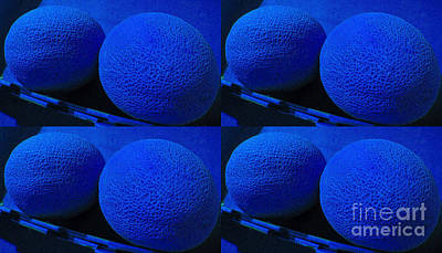 Make My Melon Blue Art Print