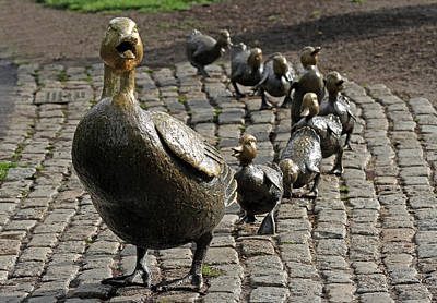 Boston Public Garden Photograph - Make Way For Ducklings by Juergen Roth