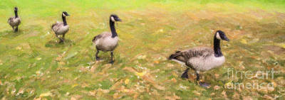 Boston Digital Art - Make Way For Geese by Liz Leyden