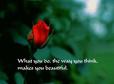 Photograph - Makes You Beautiful by Gary Wonning