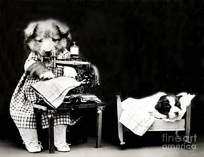 Photograph - Making Babys Clothes 1914 by Science Source