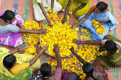 Hindu Photograph - Making Flower Garlands by Tim Gainey