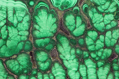 Malachite Photograph - Malachite by Darrell Gulin