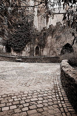 Malahide Castle Grounds Art Print