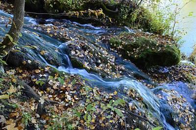 Photograph - Malanaphy Springs Fall by Bonfire Photography