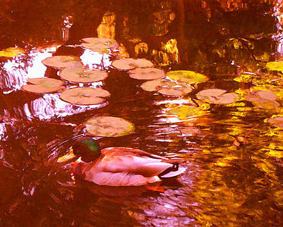 Painting - Malard Duck On Pond 3 by Amy Vangsgard
