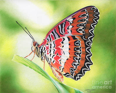 Malay Lacewing Original by Denise Howard