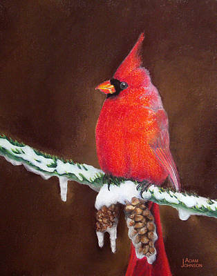 Painting - Male Cardinal by Adam Johnson