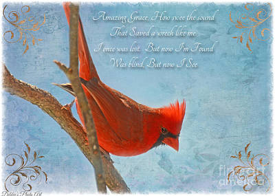 Photograph - Male Cardinal Poses With Verse II  by Debbie Portwood