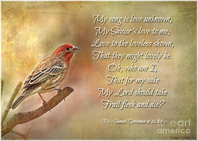 Photograph - Male House Finch With Hymn I by Debbie Portwood
