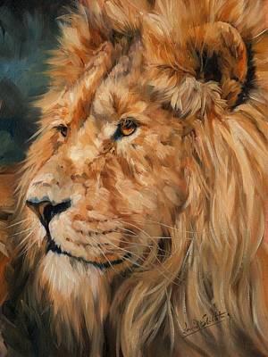 Male Lion Art Print by David Stribbling