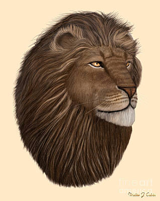 Digital Art - Male Lion Portrait by Walter Colvin